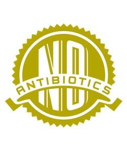 No Antibiotics